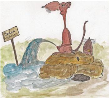 Ratten zerstören unsere Nahrungsressourcen