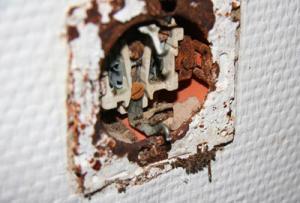 Ameisen-kommen-aus-der-Steckdose-raus