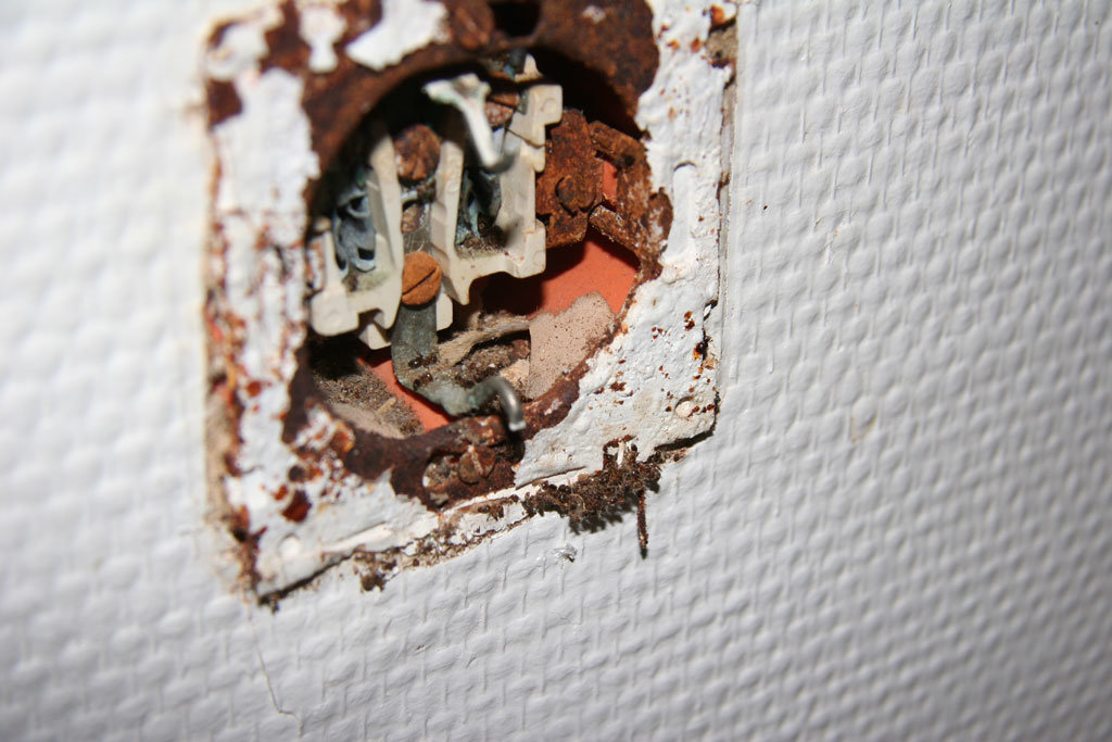 Rückseite-des-Bades,-Ameisen-kommen-aus-der-Steckdose-raus