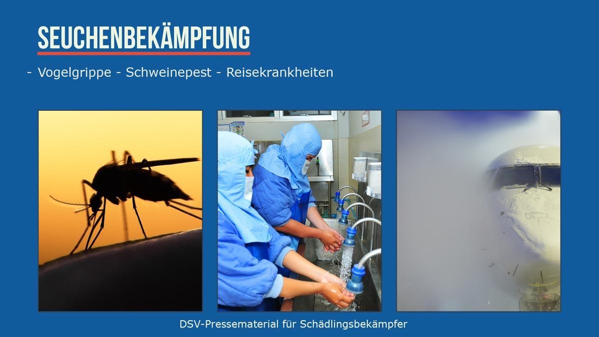 Schädlingsbekämpfer Seuchenbekämpfung, Vogelkrippe, Schweinepest, Reisekrankheiten