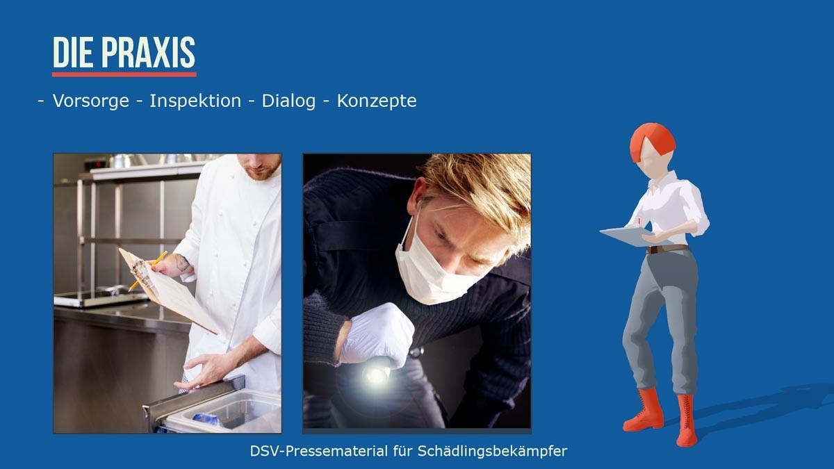 Schädlingsbekämpfer Praxis- vorsorge -Inspektion -Dialog - Konzepte