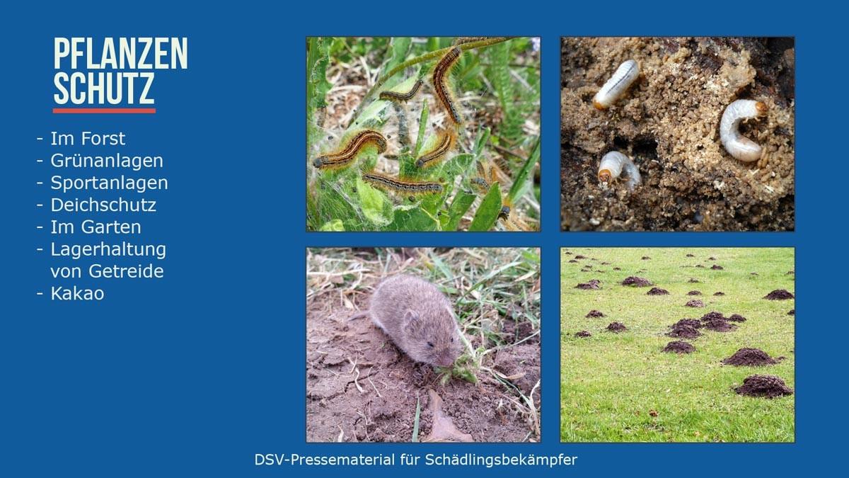 Planzenschutz - In Forst u.Grünanlagen, Sportanlagen, Deichschutz, Garten, Lagerhaltung v. Getreide, Kakao