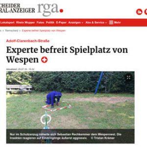 Experte befreit Spielplatz von Wespen – Remscheider General Anzeiger