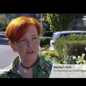 WDR läd unsere Chefin Frau Bärbel Holl für Fachfragen ein